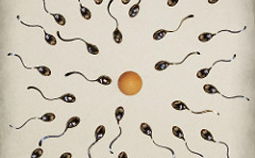 Fertilità e alimentazione